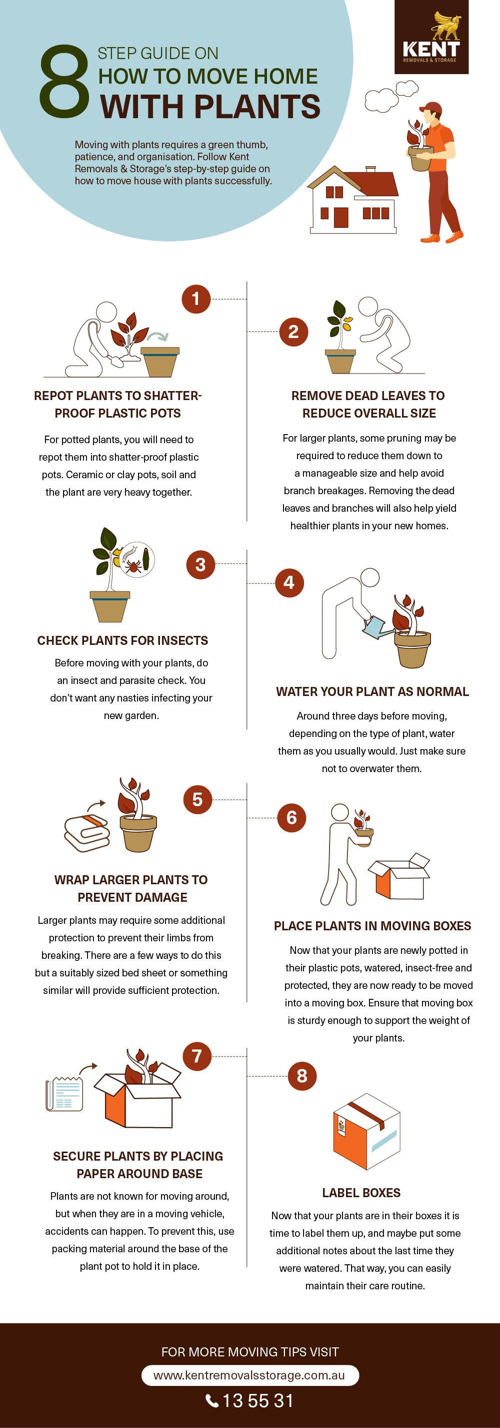 8 Step Guide On How To Move Home With Plants