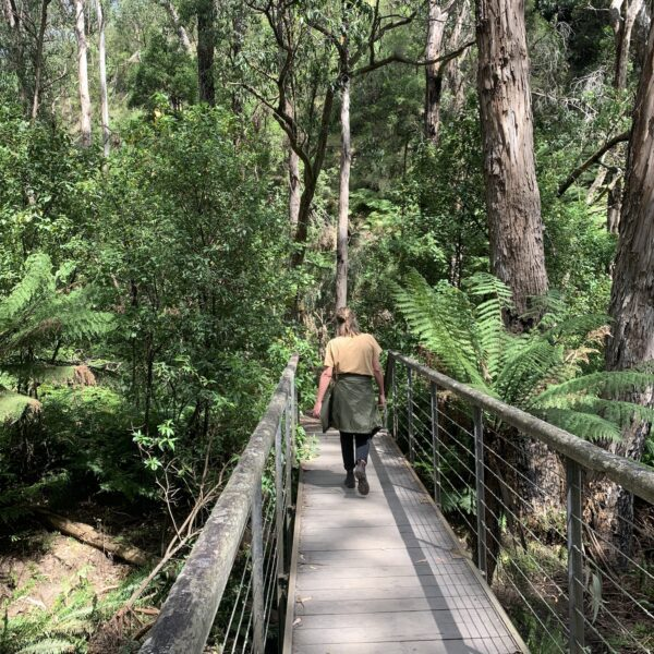 St George River Loop, Victoria walk