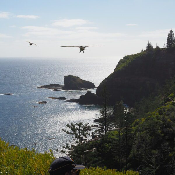 Norfolk Island walk